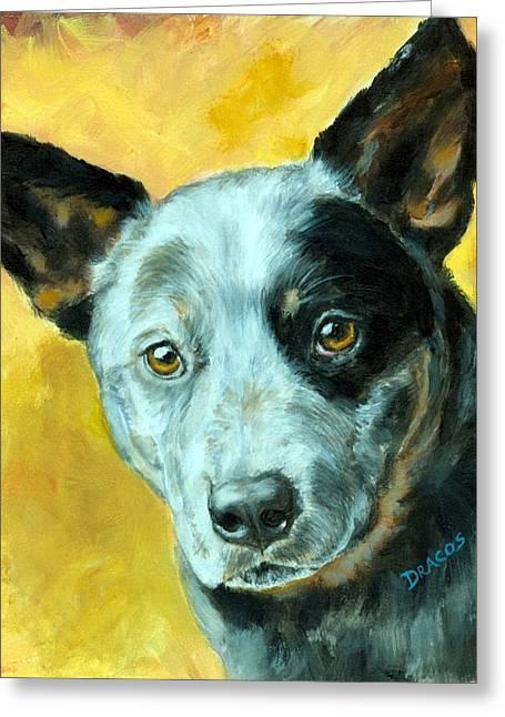 Blue Heeler Greeting Cards - Australian Cattle Dog Blue Heeler on Gold Greeting Card by Dottie Dracos