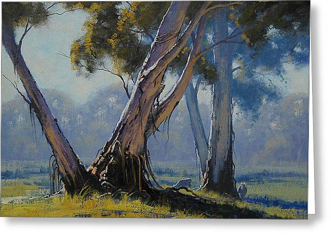 River Paintings Greeting Cards - Australian Gums Greeting Card by Graham Gercken