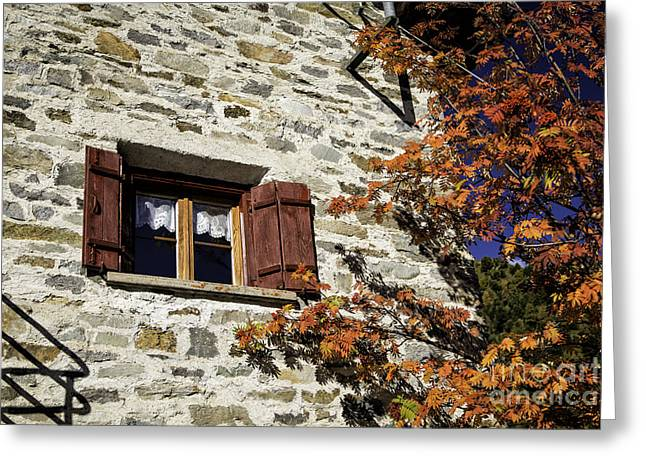 Pontresina Greeting Cards - Autumn Colors  Greeting Card by Timothy Hacker