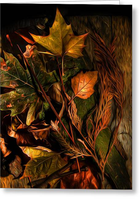 Wesley Allen Photography Greeting Cards - Autumn Colors Greeting Card by Wesley Allen Shaw