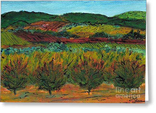 Languedoc Paintings Greeting Cards - Autumn Colours Languedoc Greeting Card by Jackie Sherwood