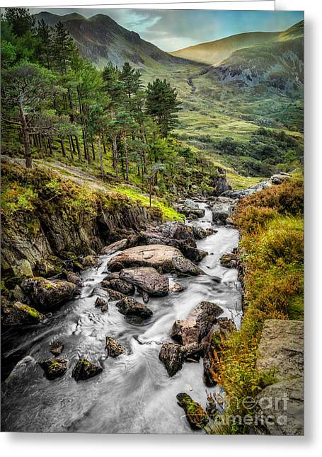 Rapids Greeting Cards - Autumn Creek Greeting Card by Adrian Evans