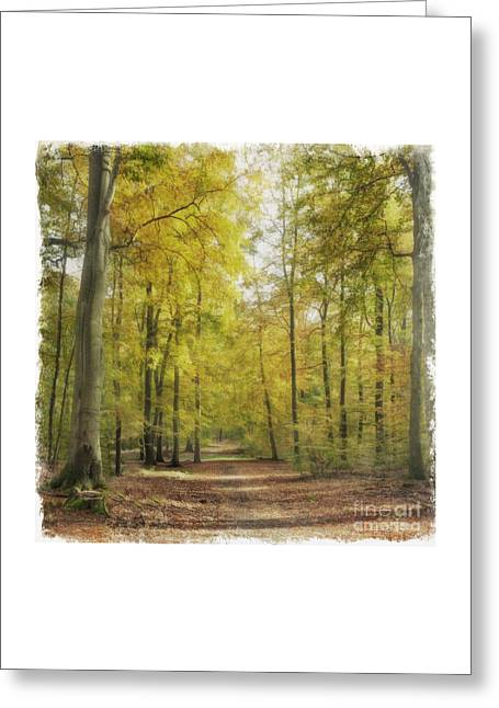 Brandenburg Digital Art Greeting Cards - Autumn forest Greeting Card by Julie Woodhouse