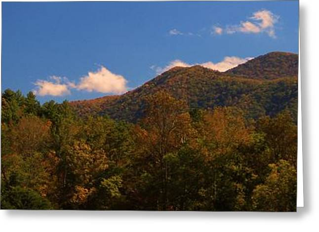 Gsmnp Greeting Cards - Autumn In Cades Cove Greeting Card by Dan Sproul
