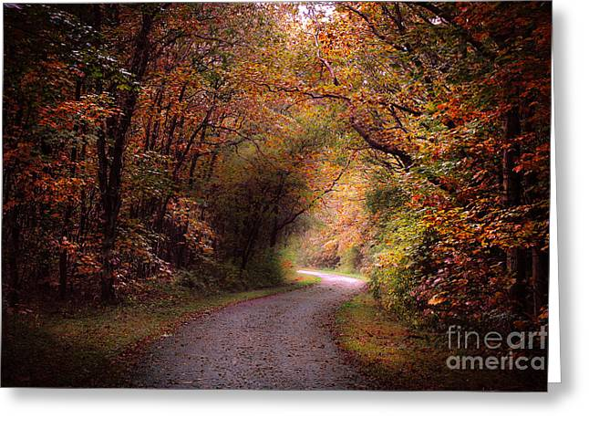 Dream Scape Greeting Cards - Autumn in the forest Greeting Card by Hugo Bussen