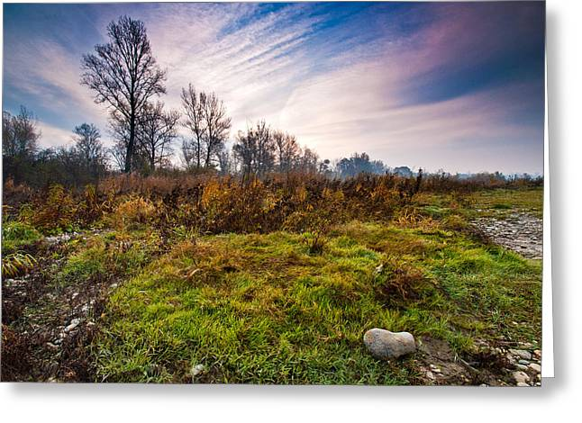 Autumn morning Greeting Card by Davorin Mance