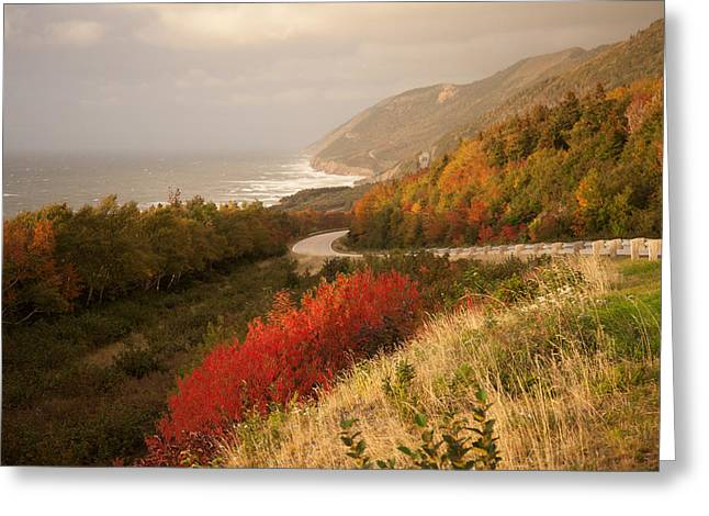 Foilage Greeting Cards - Autumn on The Cabot Trail Greeting Card by Michel Soucy