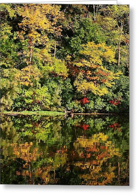 Amateur Photographer Greeting Cards - Autumn on the Lake Greeting Card by Bruce Bley