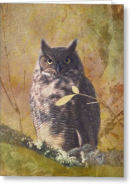 Autumn Owl Greeting Card by Angie Vogel
