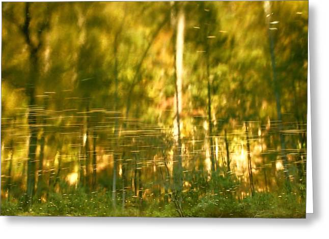 Reflections In River Greeting Cards - Autumn Reflections In Tennessee Greeting Card by Dan Sproul