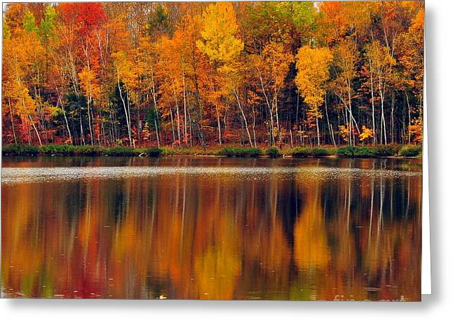 Lakes Greeting Cards - Autumn Water Colors Greeting Card by Terri Gostola