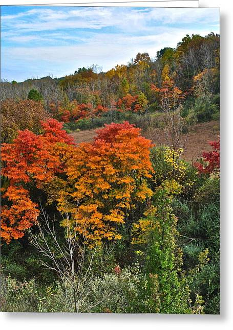 Marvelous View Greeting Cards - Autumnal Vista Greeting Card by Frozen in Time Fine Art Photography