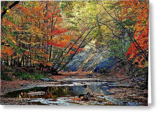 Fall Splendor Greeting Cards - Autumns Splendor Greeting Card by Frozen in Time Fine Art Photography