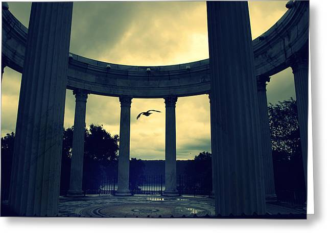 Amphitheater Greeting Cards - Awakening Greeting Card by Jessica Jenney