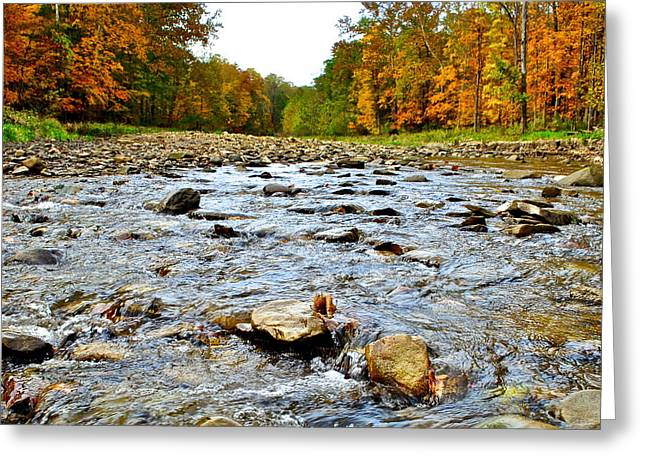 Oak Creek Greeting Cards - Babbling Brook Greeting Card by Frozen in Time Fine Art Photography