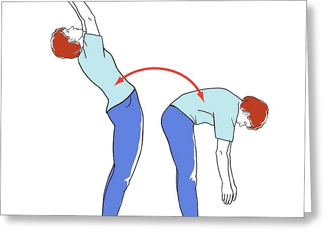 Back Exercises Greeting Card by Jeanette Engqvist