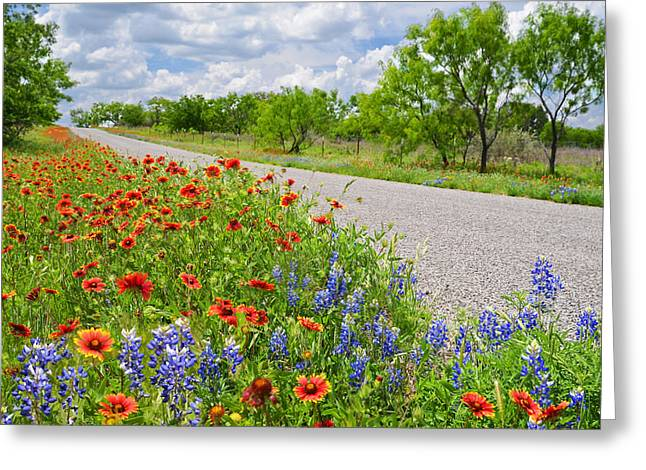 Burnet Road Greeting Cards - Backroad Beauty Greeting Card by Lynn Bauer