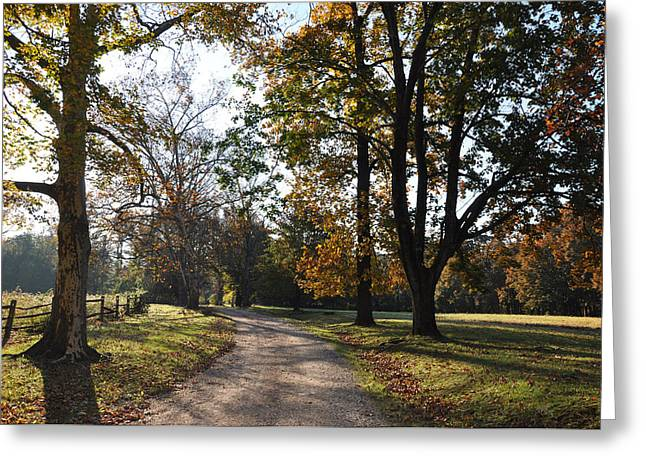 Backroads Greeting Cards - Backroads Greeting Card by Bill Cannon