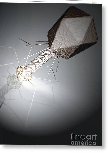 Infection Greeting Cards - Bacteriophage Greeting Card by Science Picture Co