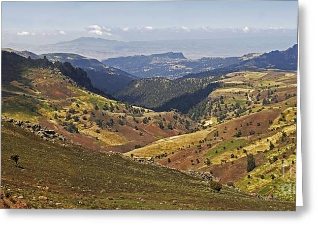 African Heritage Greeting Cards - Bale Mountains Foothills, Ethiopia Greeting Card by Brian Gadsby