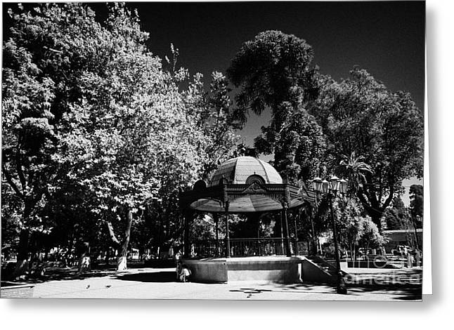 Bandstand Greeting Cards - Bandstand In Plaza Square Constitucion Chile Greeting Card by Joe Fox