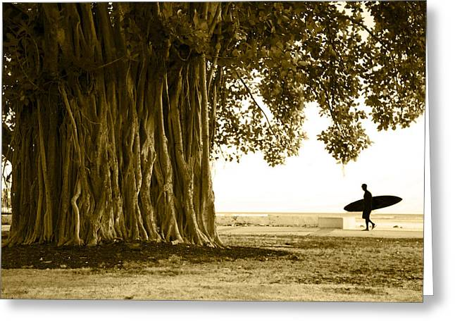 Ala Moana Greeting Cards - Banyan Surfer Greeting Card by Sean Davey