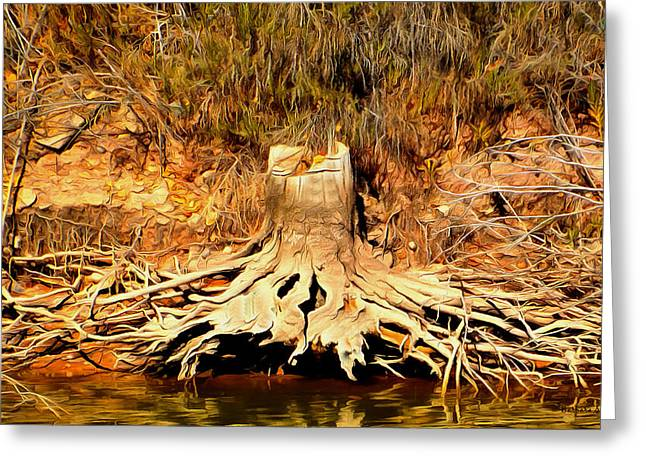 Lost City Greeting Cards - Stump at Lost City Musume Greeting Card by Barbara Snyder