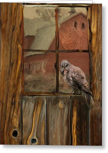 Knothole Greeting Cards - Barn Owl Greeting Card by Jack Zulli