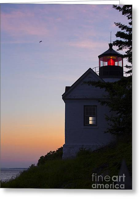 Lighthouse Sunset Greeting Cards - Bass Harbor Lighthouse Greeting Card by Diane Diederich
