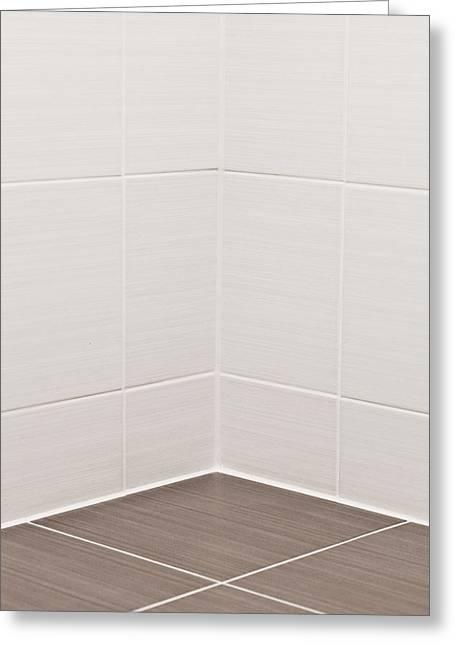 Plumbing Greeting Cards - Bathroom tiles Greeting Card by Tom Gowanlock