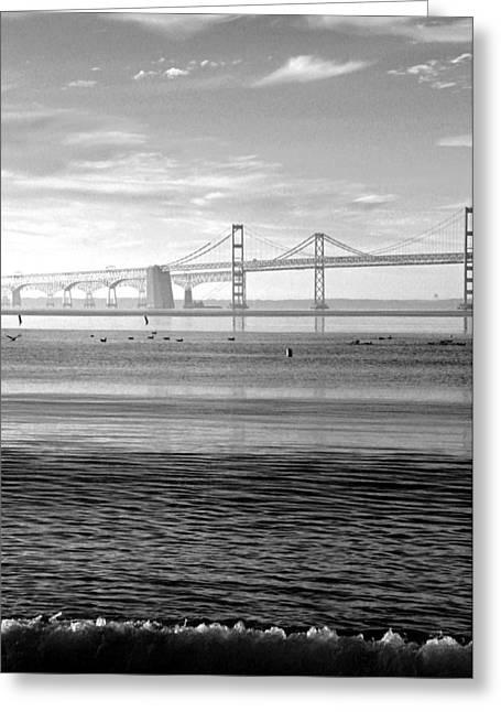 Recently Sold -  - Bay Bridge Greeting Cards - Bay Bridge Bw Greeting Card by Carolyn Stagger Cokley
