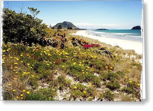 Water Photographs Greeting Cards - Beach Greeting Card by Les Cunliffe