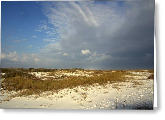 Party Invite Greeting Cards - Beach Walk Greeting Card by Kathy Bassett