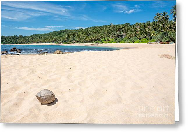 Southern Province Greeting Cards - Beach with coconut. Greeting Card by Christina Rahm