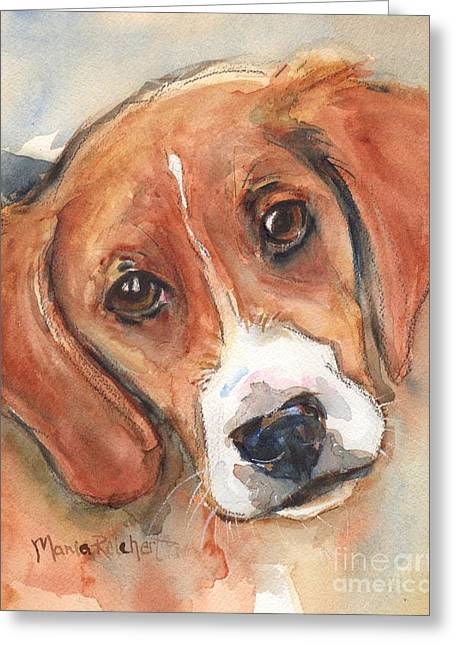 Beagle Paintings Greeting Cards - Beagle Dog  Greeting Card by Maria