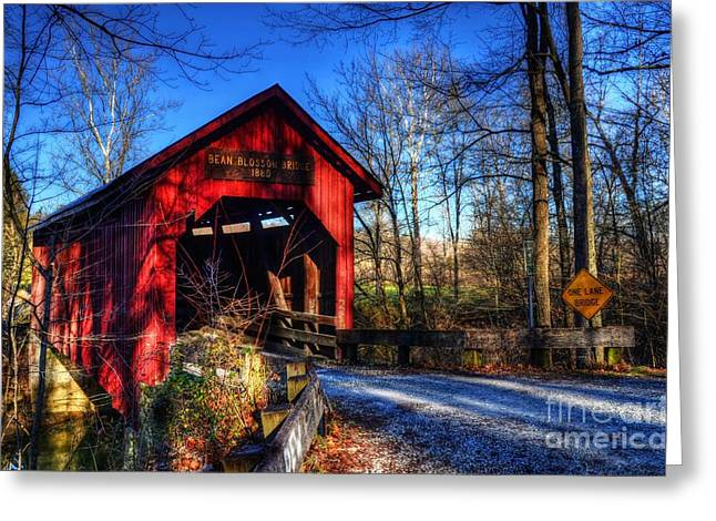Rural Indiana Photographs Greeting Cards - Bean Blossom Bridge Greeting Card by Mel Steinhauer