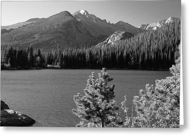 Rmnp Greeting Cards - Bear Lake Monochrome Greeting Card by Eric Glaser