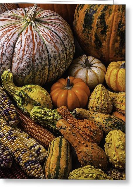 Ornamentation Greeting Cards - Beautiful Autumn Harvest Greeting Card by Garry Gay