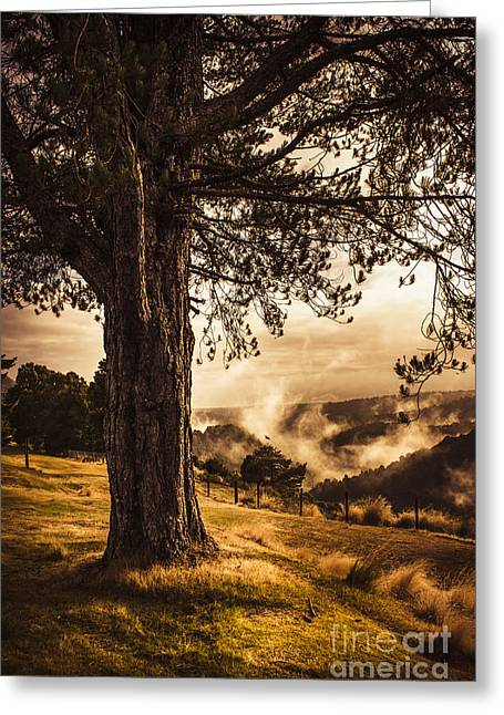Beautiful Autumn Tree Landscape In A Serene Park Greeting Card by Jorgo Photography - Wall Art Gallery