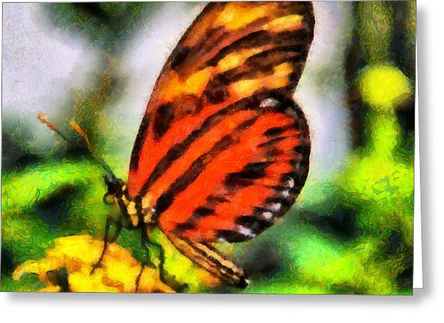 Beautiful Butterfly Greeting Card by Dan Sproul