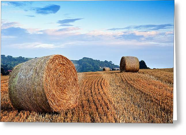Beautiful Golden Hour Hay Bales Sunset Landscape Greeting Card by Matthew Gibson