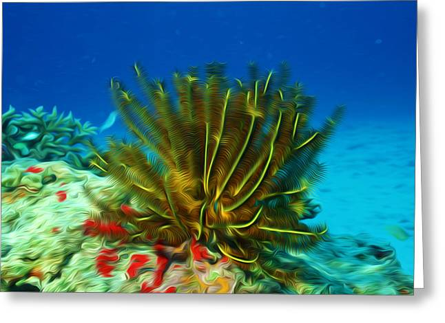 Sealive Paintings Greeting Cards - Beautiful marine plants 11 Greeting Card by Lanjee Chee