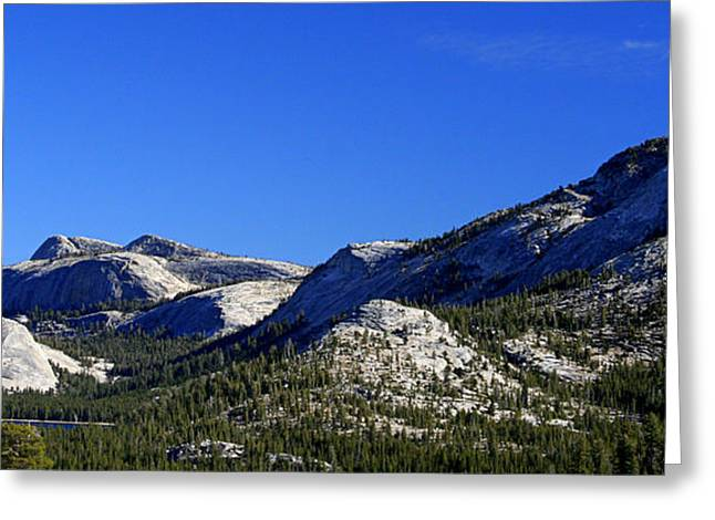 Beautiful Sierras Greeting Card by Lynn Bawden