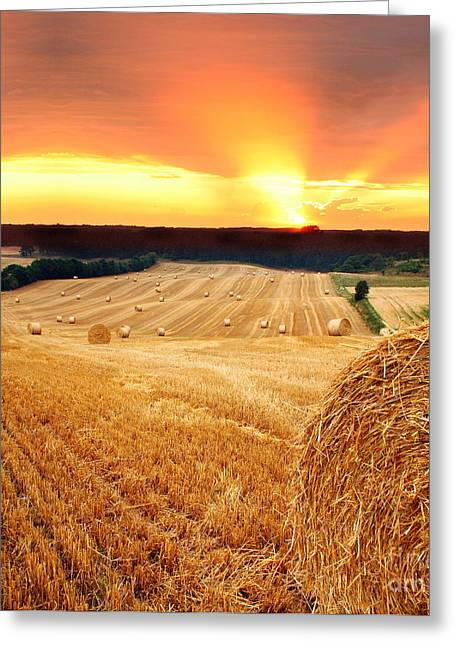 Evening Scenes Pyrography Greeting Cards - Beautiful Straw Bales Greeting Card by Boon Mee