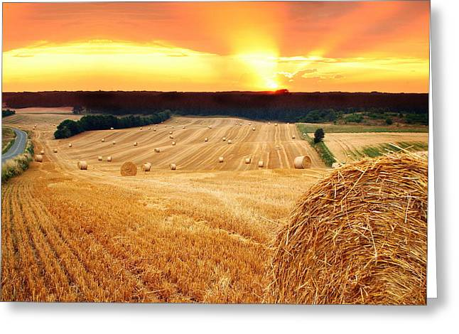 Beautiful Straw Bales Greeting Card by Boon Mee