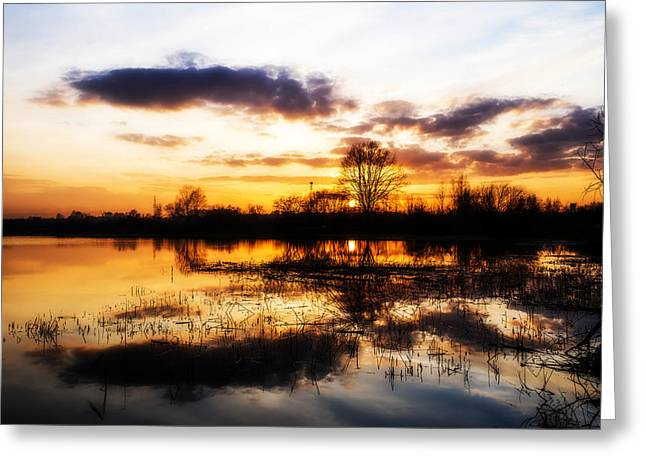 Spectacular Greeting Cards - Beautiful sunset reflecting in a lake Greeting Card by Jaroslaw Grudzinski