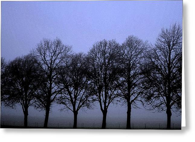 Promoters Greeting Cards - Beautiful trees in the fall Greeting Card by Toppart Sweden