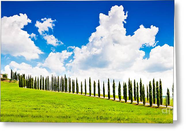 Chianti Greeting Cards - Beautiful Tuscany Greeting Card by JR Photography