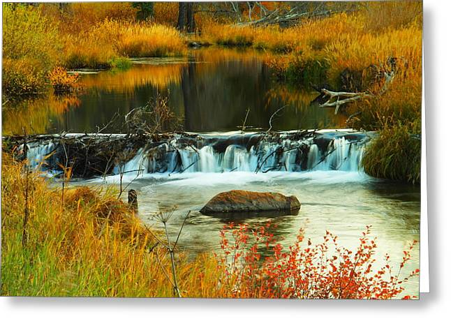 Solace Greeting Cards - Beautiful water Greeting Card by Jeff  Swan