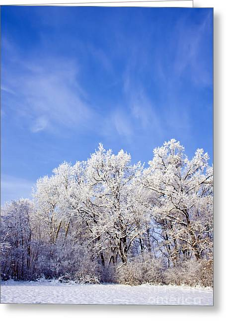 Snow-covered Landscape Greeting Cards - Beautiful Winter Landscape Greeting Card by Dan Radi